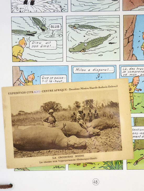 Bula-Matari (La Chasse aux Hippopotames) 6/9